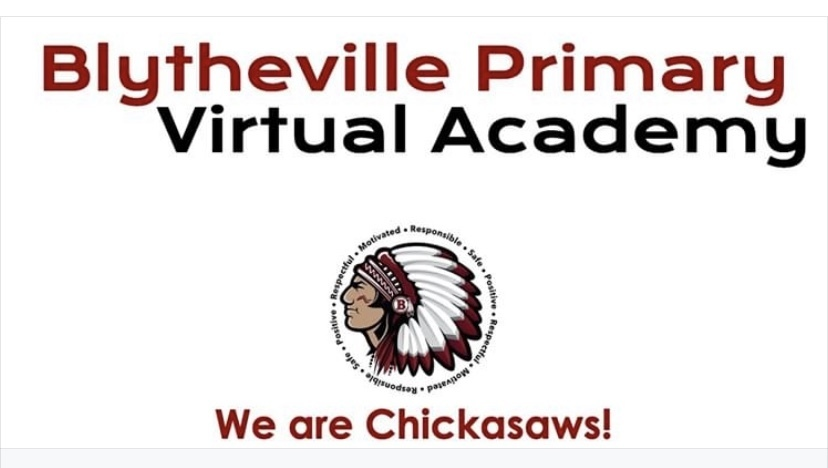 Primary virtual academy logo